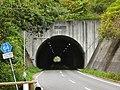 Semine Tunnel east.jpg
