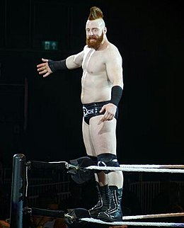 Sheamus 2016 (cropped).jpg