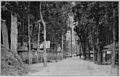 Shiba Park 1912 or 1913.jpg