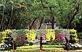 Shilin Residence Park 士林官邸公園 - panoramio.jpg