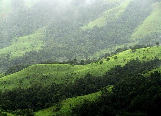 Kudremukh National Park, Western Ghats, Karnataka