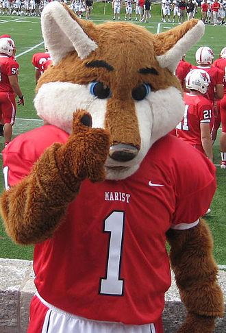 Marist Red Foxes - Frankie the red fox posing at Tenney Stadium on the Marist College campus