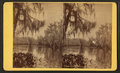 Silver Springs Run, from Robert N. Dennis collection of stereoscopic views.png