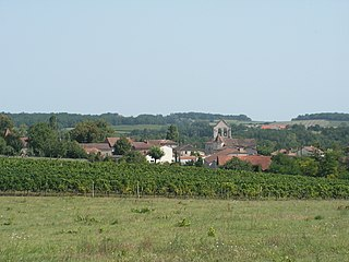 Singleyrac Commune in Nouvelle-Aquitaine, France