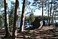 Site on lake 3, on a big island. our 2010 site - panoramio.jpg
