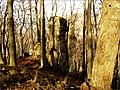 Skala pri Jánošíkovej bašte - panoramio.jpg