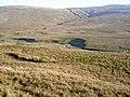 Sleddale Pasture - geograph.org.uk - 692663.jpg