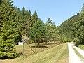 Slnečná Blatnická dolina - panoramio.jpg