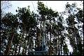 Smoczka, Mielec, Poland - panoramio (7).jpg