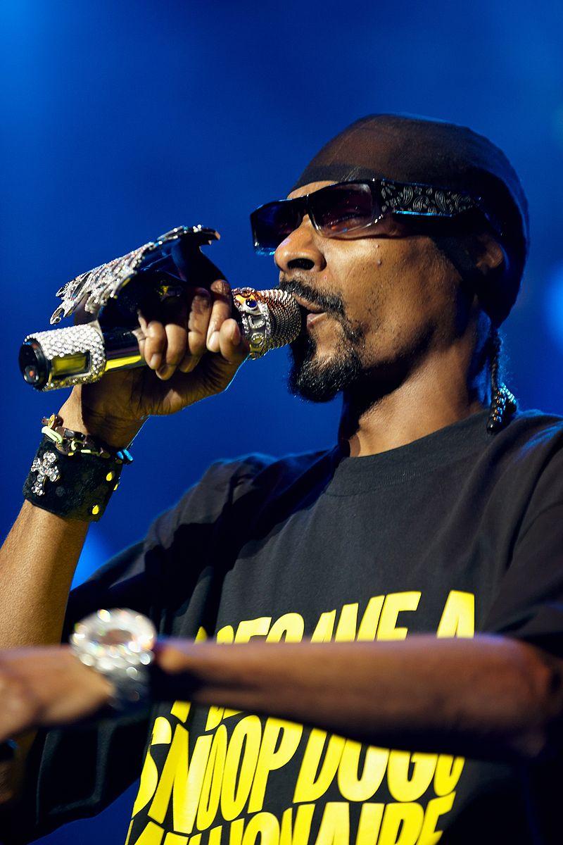 Snoop Dogg @ D%C3%B8gnvill 2009 07.jpg