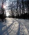 Snow14Slovakia7.JPG