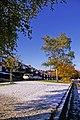 Snow in Autumn, London N14 - geograph.org.uk - 1032864.jpg