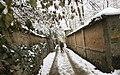 Snowy day of Tehran - 13 January 2007 (19 8510230258 L600).jpg