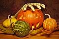 Some Pumpkins (233807261).jpeg
