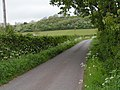 Somerset country lane - geograph.org.uk - 1306930.jpg