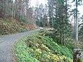 Sommerlicher Herbst Herrenstuhl - panoramio (11).jpg