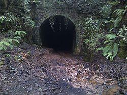 South portal of Hawthorns Tunnel, Drybrook.jpg