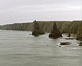 Stacks, Around Duncansby Head, Caithness (250396) (9465022054).jpg