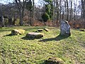 Standing Stones in Cemetery wood - geograph.org.uk - 740151.jpg