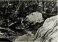 Standpunkt Marmolata, Blick auf Baranchie von der Marmolatascharte. (BildID 15427760).jpg
