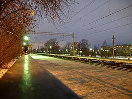 Старый Петергоф (станция)