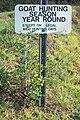 Starr-990107-3125-Rubus niveus-form a by hunting sign-Polipoli-Maui (23898460403).jpg