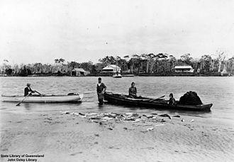 Maroochydore - Fish haul, 1907