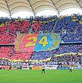 Steaua choreography.jpg
