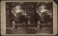 Steuben Park, Utica, N.Y, from Robert N. Dennis collection of stereoscopic views 2.png