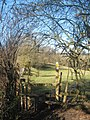 Stile on the High Weald Walk - geograph.org.uk - 1732087.jpg