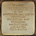 Stolperstein für Blau Lajos (Lendava).jpg