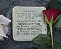 Stolperstein für Gertrud Stern, Geibelstraße 40, Chemnitz (1).JPG