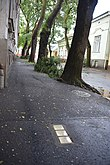 Stolpersteine in Debrecen 01.jpg
