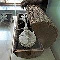 Stone Gusle, Museum of Yugoslavia.jpg