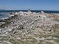 Stony Point Penguin Colony - panoramio (23).jpg