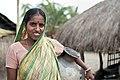 Sunderbans, India (4138812922).jpg