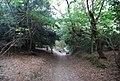 Sunken lane through Crockham Hill Common - geograph.org.uk - 1501821.jpg
