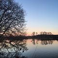 Sunset at Huddleston Park Pond.jpg