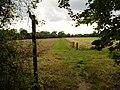 Sussex Border Path - geograph.org.uk - 226194.jpg