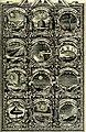 Symbolographia, sive De arte symbolica sermones septem (1702) (14561064469).jpg