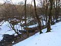 Syrets river Kiev.jpg