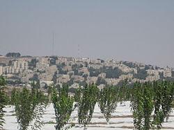 תלפיות מזרח במבט מקיבוץ רמת רחל