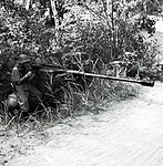 Tankbüchse Mod 1941 D2.8566.jpg