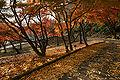 Tatsuno park02bs4592.jpg