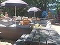 Terras Zwembad de Kuil Prinsenbeek DSCF5113.jpg