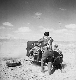 7th Armoured Division (United Kingdom) - A 2-pounder anti-tank gun being manned by members of the 2nd Battalion, Rifle Brigade (The Prince Consort's Own), 24 March 1942.