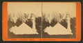 The Dade Monuments, from Robert N. Dennis collection of stereoscopic views.png