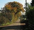 The Gortnageeragh Road near Cargan - geograph.org.uk - 1545758.jpg