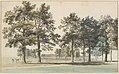 The Moat Island, Windsor Great Park MET DP829470.jpg