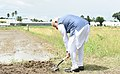 The Prime Minister, Shri Narendra Modi breaks ground for resilient rice field laboratory, at the International Rice Research Institute (IRRI), in Los Banos, Philippines on November 13, 2017 (1).jpg
